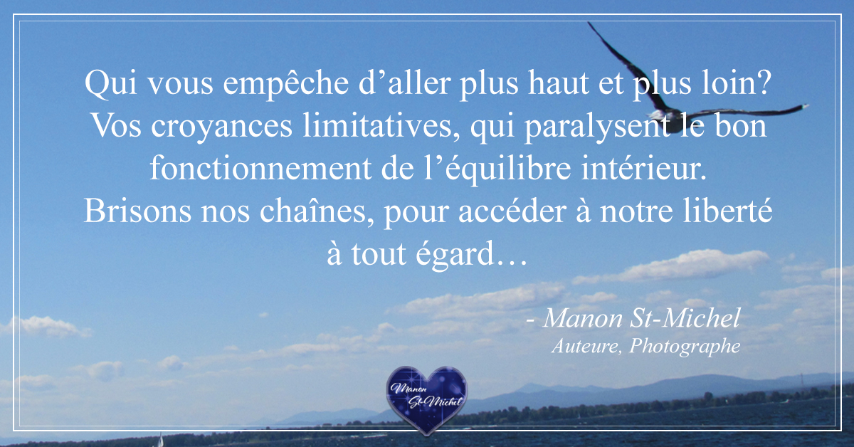 citation oiseau